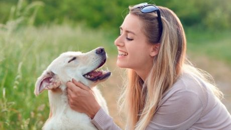 The Therapeutic Importance of Pets. One of the greatest benefits of having patients to communicate with animals in certain locations is better morale and decreased anxiety.